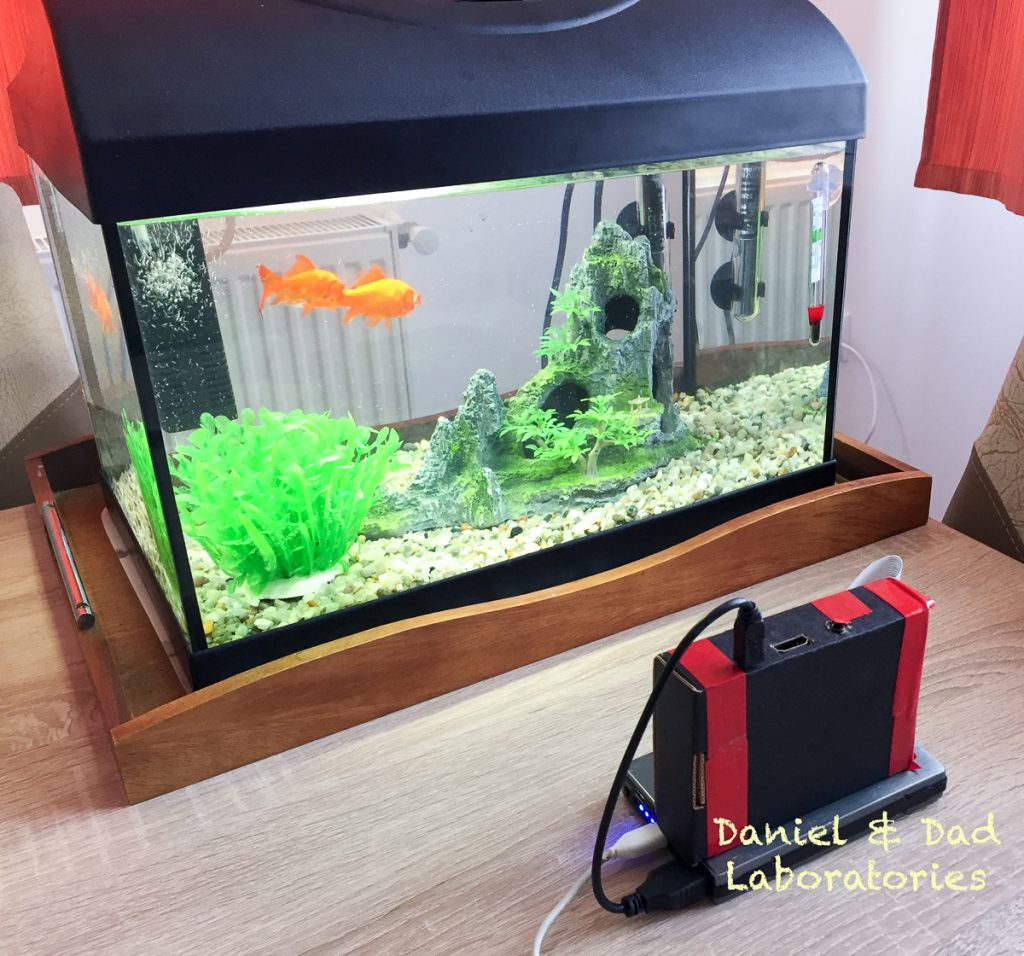 Youtube Live Streaming Raspberry Pi Fish Tank 1
