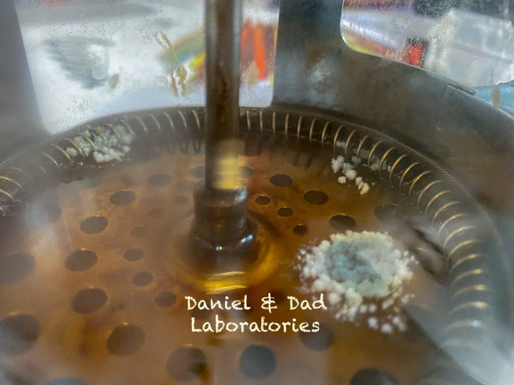 Mold - a microscopic world - coffee