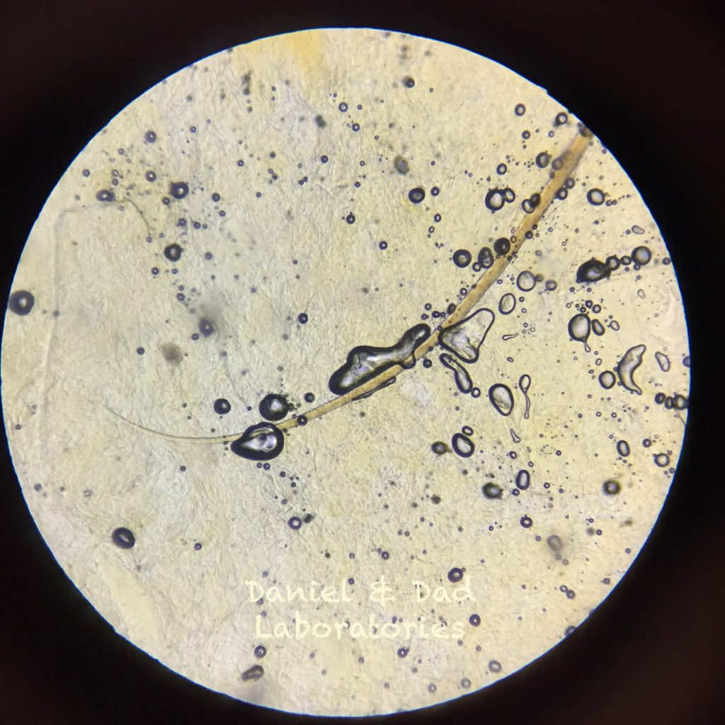digital optical microscope adpter